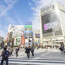 البحث عن وظيفة في اليابان بعد التخرج
