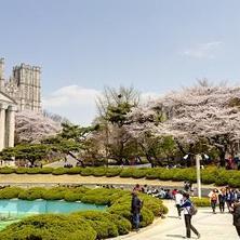 Khái quát về hệ thống giáo dục bậc cao tại Hàn Quốc