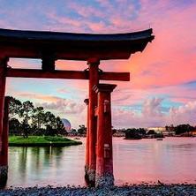 Năm điều bạn có thể làm ở Nhật Bản