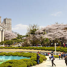 التقديم للجامعات الكورية الجنوبية