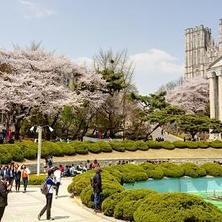 韩国大学申请流程攻略