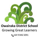 Owairaka District School